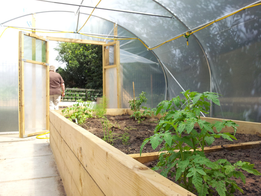 Thew newly planted polytunnel.