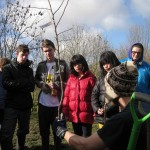 George Green's students learn about the new tree varieties.