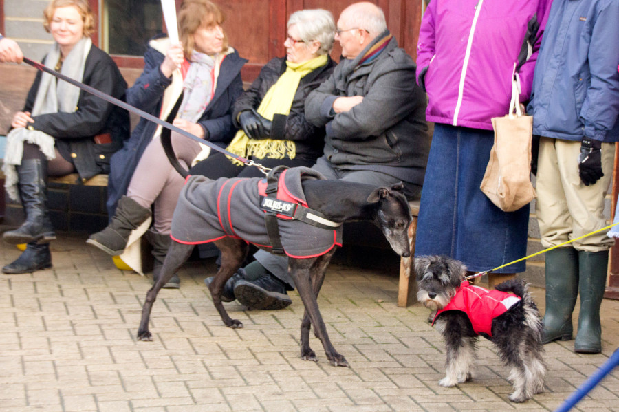Making friends as we await the reveal!