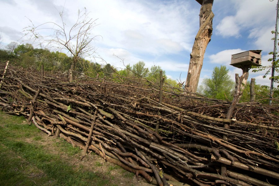 The completed dead hedge provides a natural barrier.