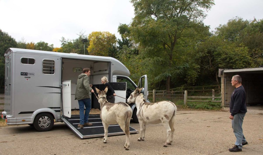 Farmers Courtney and Sundae showing Dissy and Snowflake their transport.