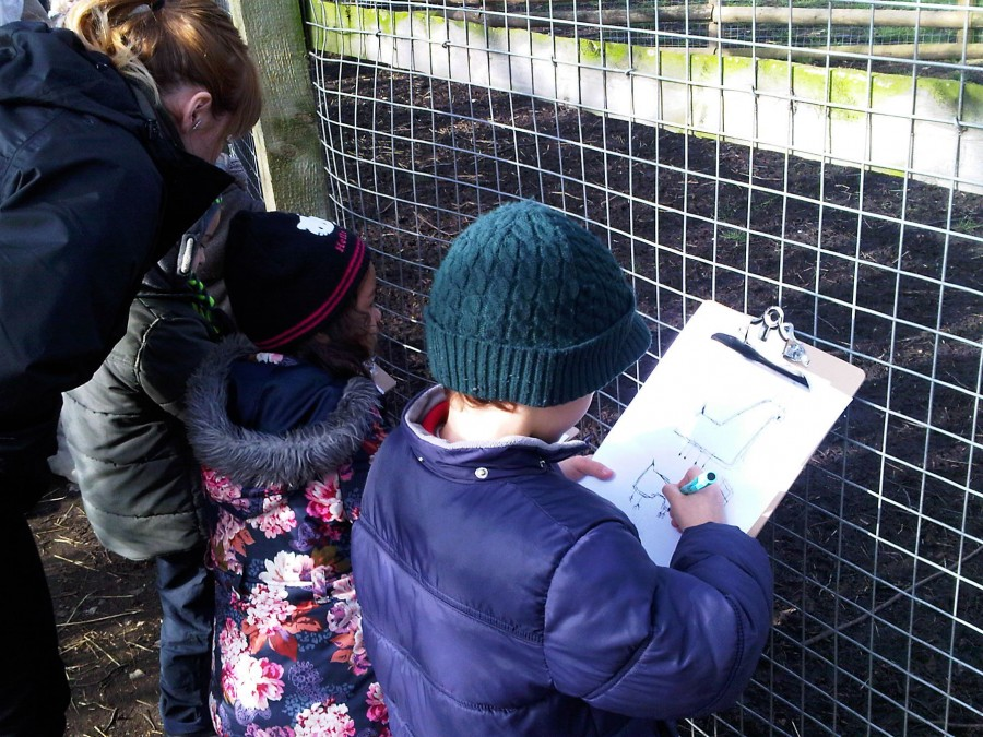 Children take an extra close look at the animals in a drawing class around the farm. This young man has really captured our loveable rogue Boxer the Llama.