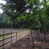 The new pony paddock opposite the riding arena.