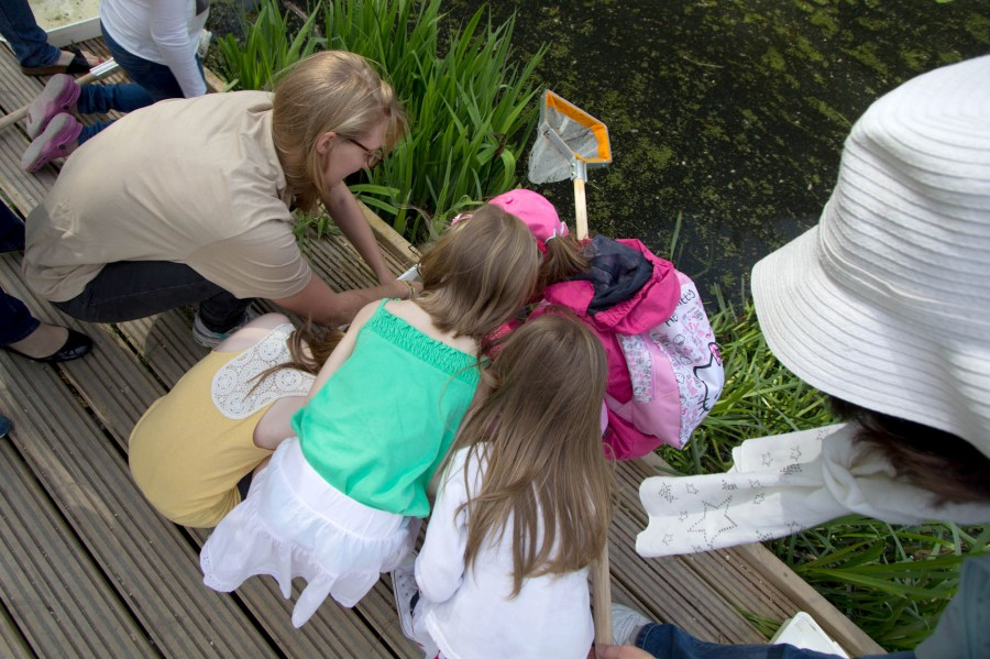 Eager young visitors helping to check the nets!