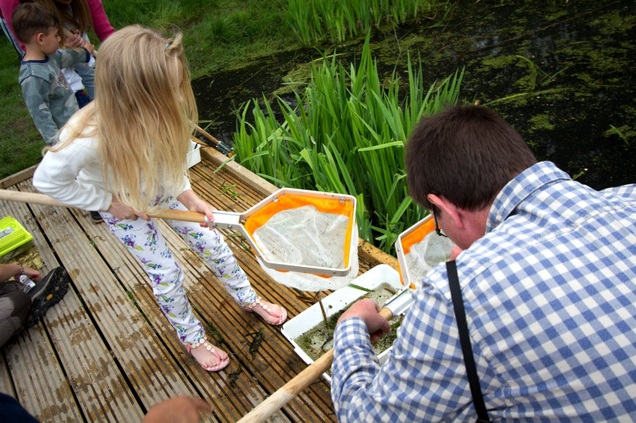 A young pond dipper under the expert guidance of Tower Hamlet biodiversity officer, John Archer.