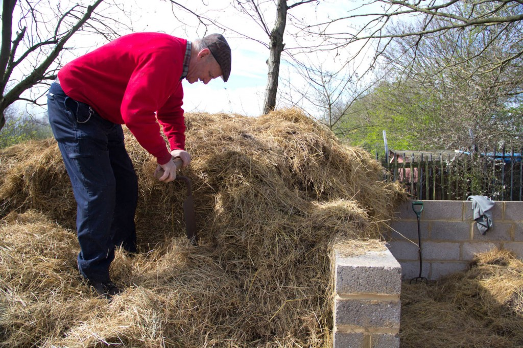 Peter cutting through the haystack.
