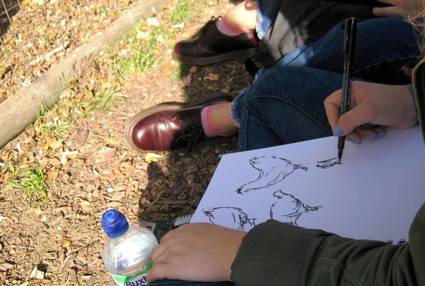 Artists from The Princes Drawing School sketching our hens.