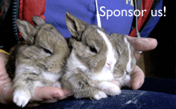 Sponsor Small Animals