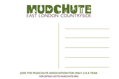 Mudchute Postcard Back