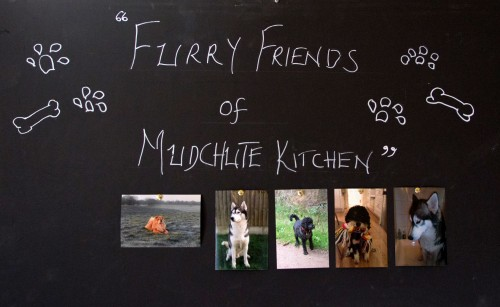mudchute-kitchen-0752
